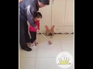 Как не сойти с ума с детьми дома