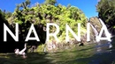 Narnia Hilo Hawai i All Creation Testifies
