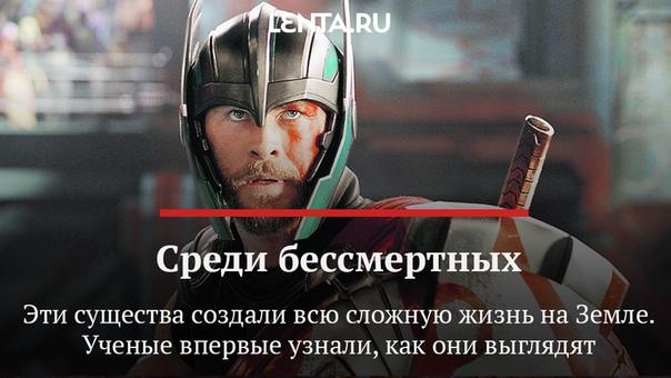 Асгардцы — это не только Тор и Локи,...