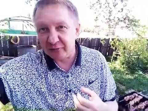 ПИВО ВИНО ШАШЛЫКИ И ФУТБОЛ ГЕРМАНИЯ ВЕРДЕР БАЙЕР ТОТАЛ БОЛЬШЕ 2 5 ПРОГНОЗ СЕГОДНЯ БУНДЕСЛИГА