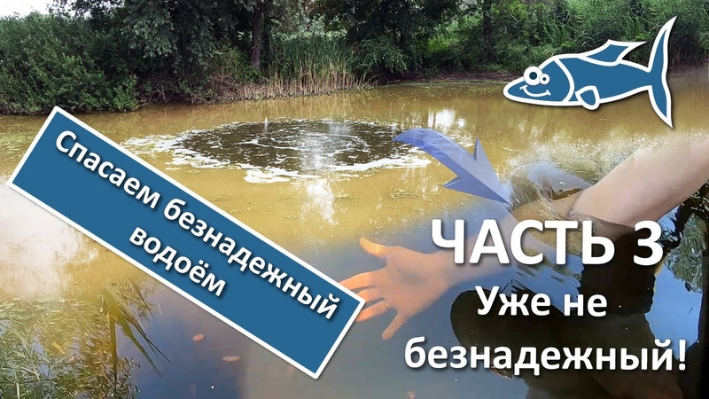 Как очистить пруд Что стало с прудом ЧАСТЬ 3