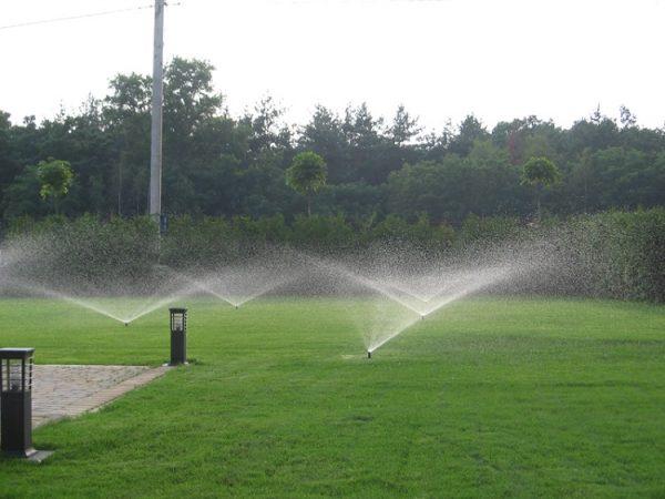 Поливка газона верным способом, количество воды для полива, механизированный способ доставки воды до растений На дачном участке расположены зоны садового участка, огорода, мест для цветов. Полив