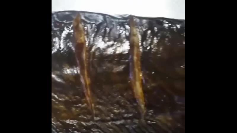Для наших любимых покупателей в наличии только лучшая свежая мягенькая и вкусная рыба! @ astrakhan ribka Вобла крупная и с