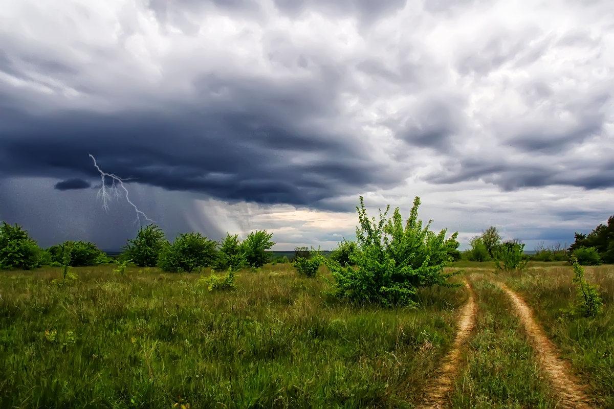 Завтра в Курской области прогнозируют дожди и грозы