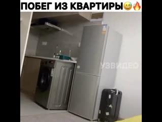 Побег из квартиры