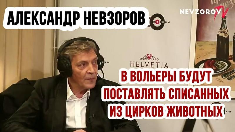 Александр Невзоров списанных из цирков животных будут продавать для вольерной охоты