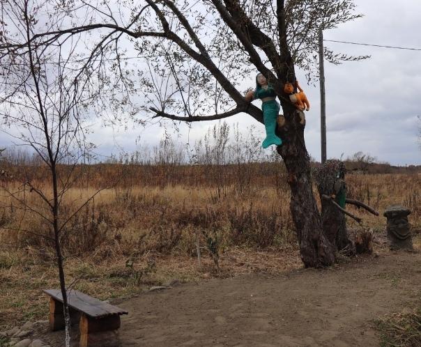 В Сахалинской области на благоустройство школьной аллеи потратили полмиллиона рублей Что получилось можно увидеть на фото 17 октября в селе Новом прошло торжественное открытие аллеи. Этот проект