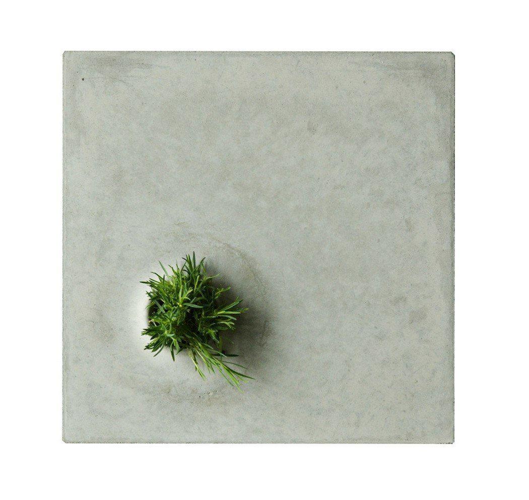 Concrete Plant Pots / Designer Caroline Brahme
