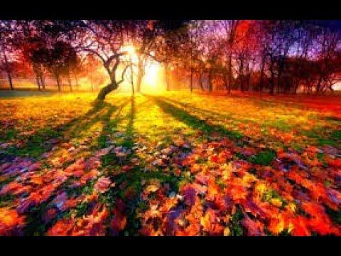 Тег Эстафета Осень рыжая подружка помогает в повязушках осень рыжая подружка помогает в повязушках