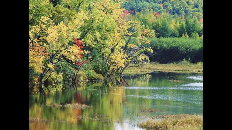 А река течет клип на Кавер