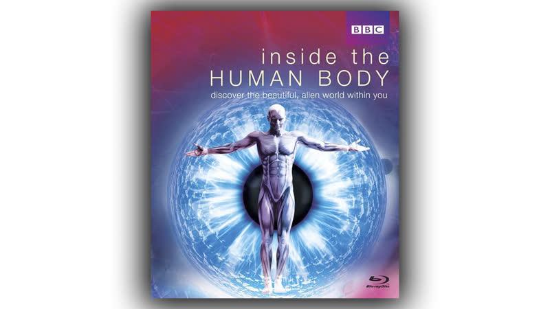 Внутри человеческого тела 2011