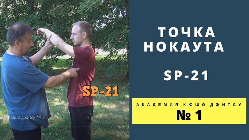 Точкa нокаута SP 21. Академия Кюшо джитсу № 1