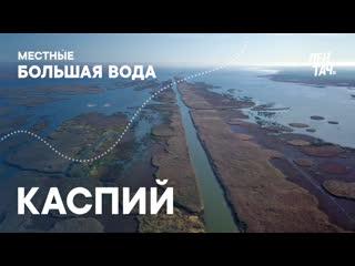 МЕСТНЫЕ. БОЛЬШАЯ ВОДА #6 | Каспий