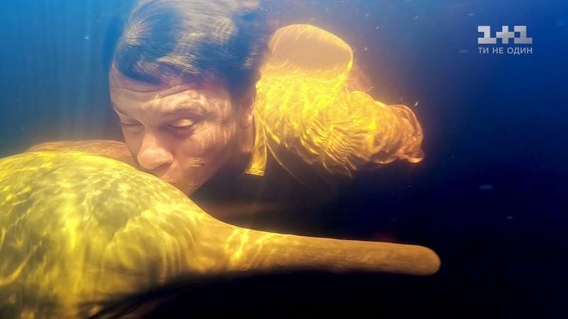 Пресноводные дельфины и традиционное блюдо из бананов Бразилия Мир наизнанку 10 сезон 34 выпуск