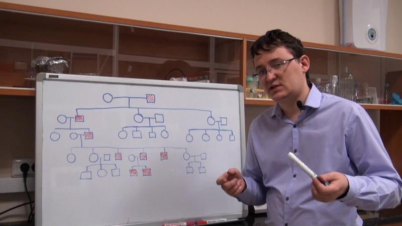 Анализ родословных Урок 5 Задача 7 3 быстрый разбор в конце видео