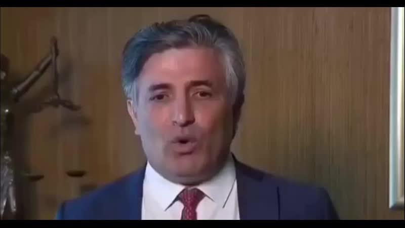 Адвокат Пашев заявил о невиновности Ефремова