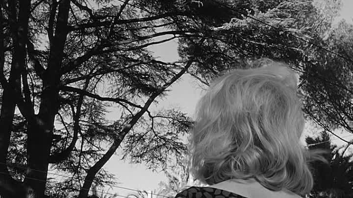 Затмение L'eclisse 1962 ozv