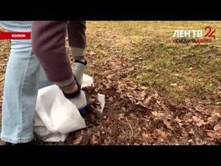 Антивирусные субботники в Волхове /// ЛенТВ24