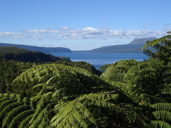 Таравера. Гора в новой Зеландии., изображение №2