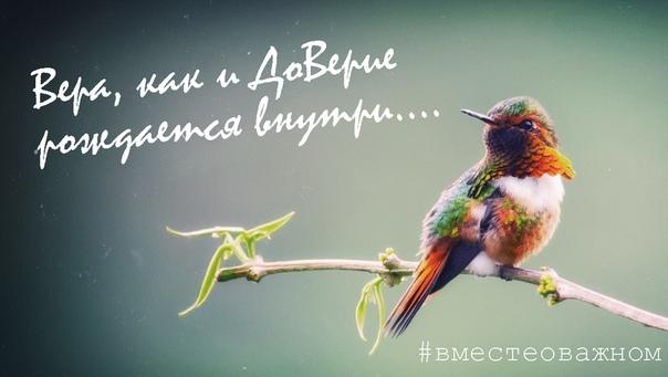 Птица, сидящая на дереве, никогда не боится, что ветка сломается, потому что она доверяет не ветке, а своим собственным крыльям