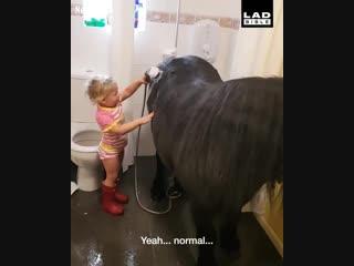 3-летняя девочка моет пони в ванной