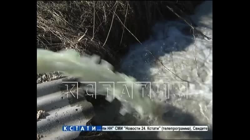 Ядовитый млечный путь в Воротынском районе в реку начали сбрасывать химические отходы молочного производства