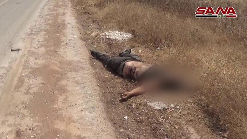 كاميرا سانا توثق خسائر الإرهابيين على محو158