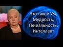 Черниговская Т В Что такое Ум Мудрость Гениальность Интеллект Будущее