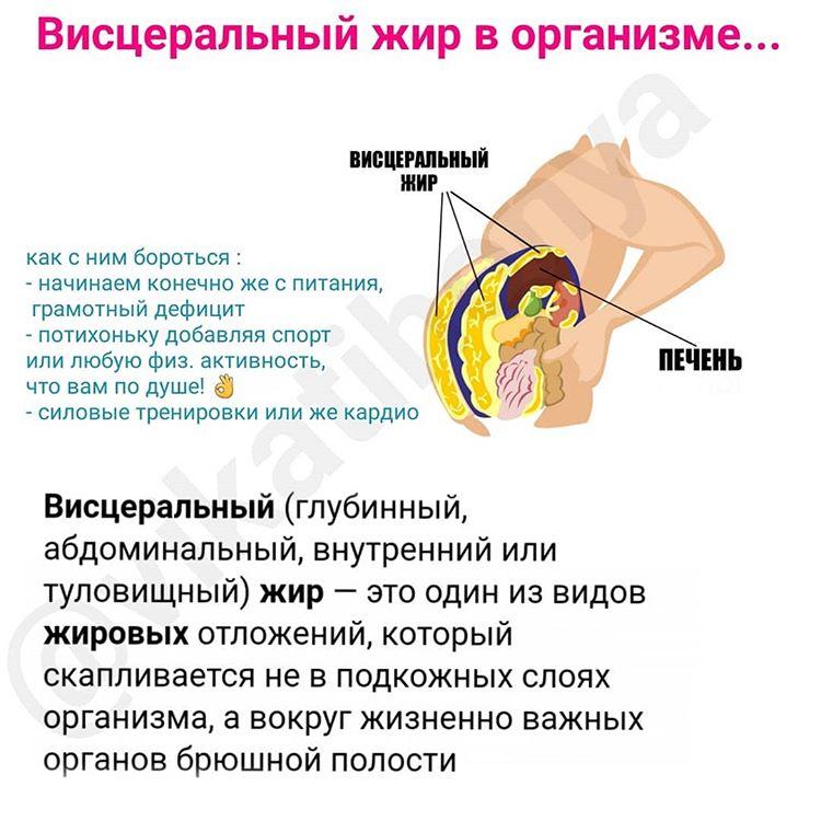 Как Сжечь Висцеральный Жир Упражнения. Как убрать висцеральный жир и как избавиться от внутреннего жира?