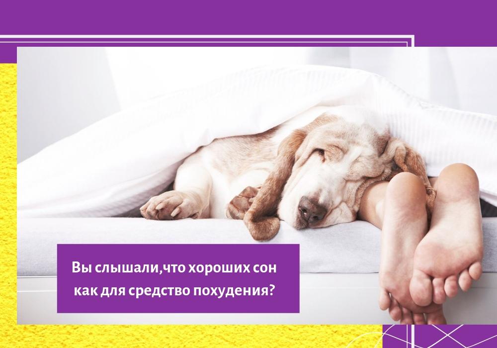 Центр для похудения сон