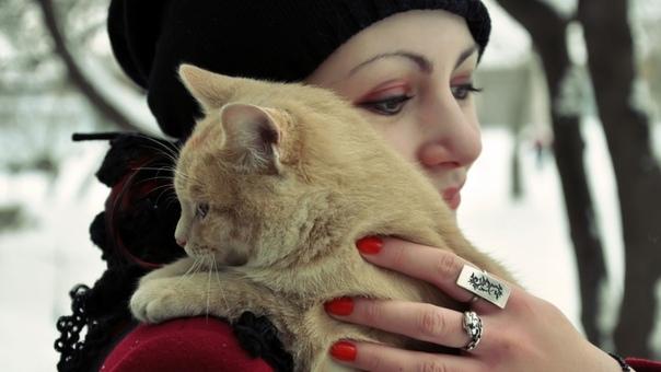 СЕРЕГА, БАРСИК И ОНА... Жил-был молодой человек по имени Сергей. И был у него кот Барсик. Тооолстый такой. И добротный, с блестящей шерстью и наглой мордой. Эта наглая морда часто будила своего