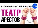 ТЕАТР АРЕСТОВ. Политическое шоу власти и оппозиции (Познавательное ТВ, Артём Войтенков)