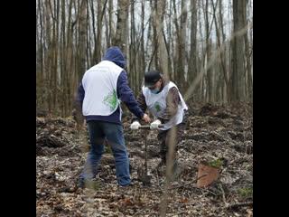 В Ульяновской области заложен Сад памяти