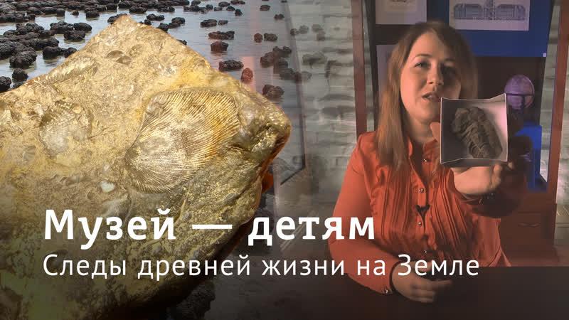 Музей —детям Следы древней жизни на Земле