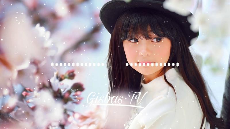 Nhạc Tik Tok Thái Lan Remix nhạc gây nghiện Gisbas TV