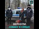Сотрудники ППС вернули украденную собаку в семью — Москва 24