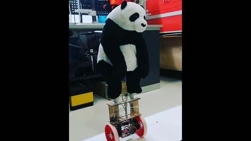 Робот панда балансирующая на двух колесах