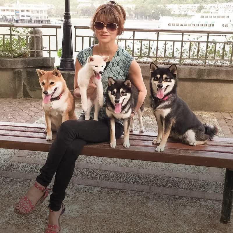 Собака, которая портит фото