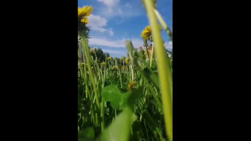 Video a198e09c01ec5f03bf3d1551cff87db0