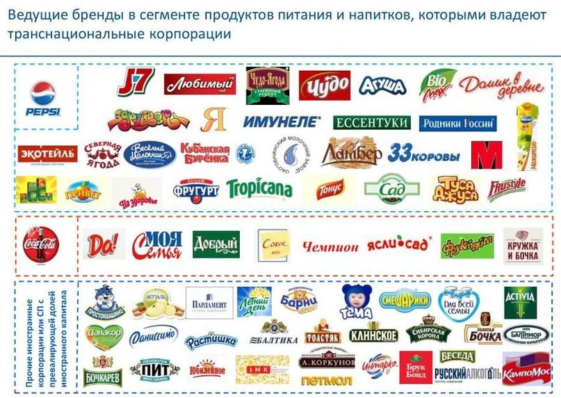 Уполномочены заявить вместо Минсельхоза: Россия теряет продовольственный суверенитет, изображение №2