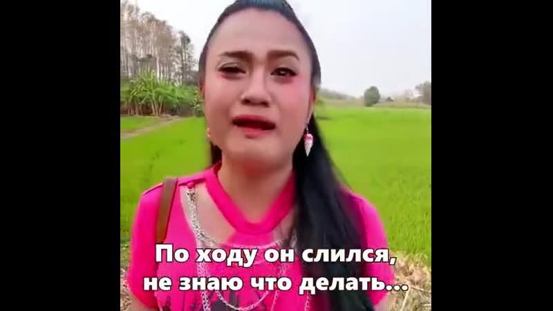 Беги Степан
