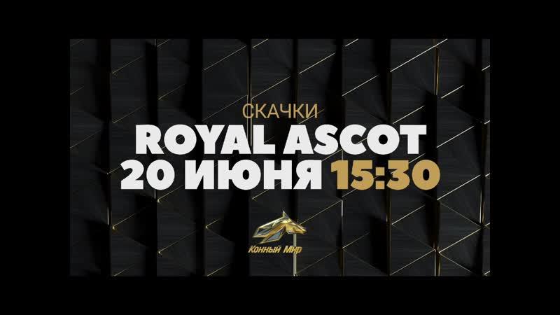 Скачки. Royal Ascot 20.06.2020. Анонс.
