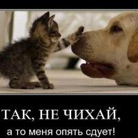 Федоровна Оксана
