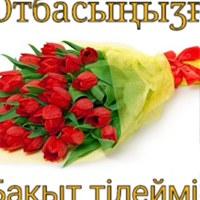 Фотография профиля Гулшат Рустемовой ВКонтакте