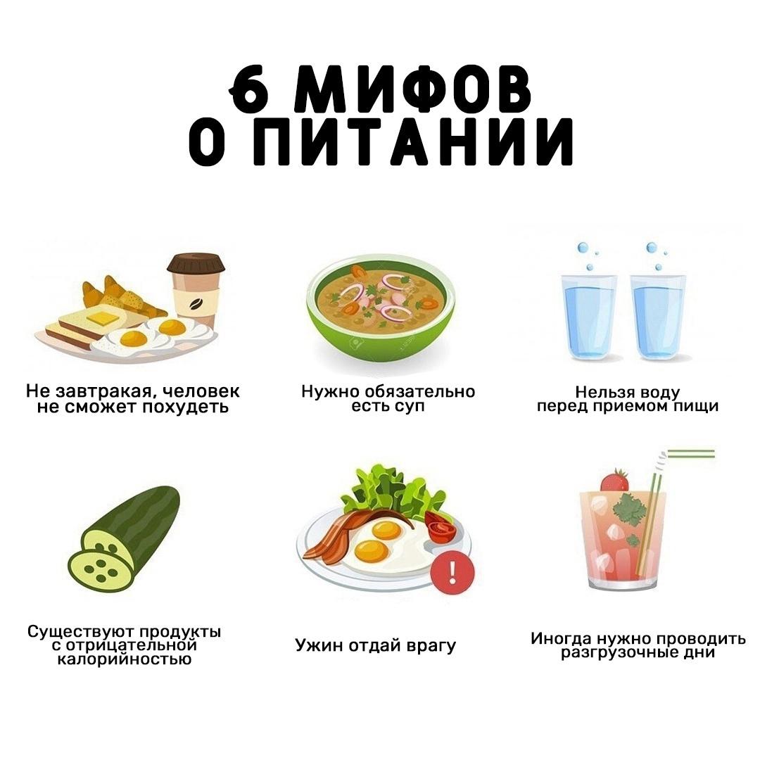 Развеиваем самые популярные мифы и о питании
