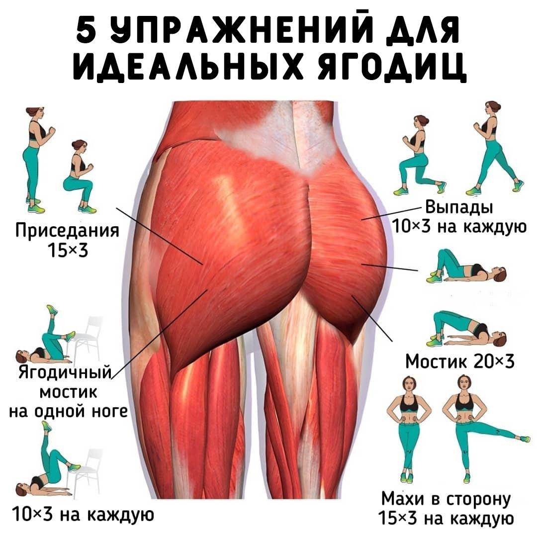 5 упражнений для тех, кто мечтает о подтянутых и упругих ягодицах