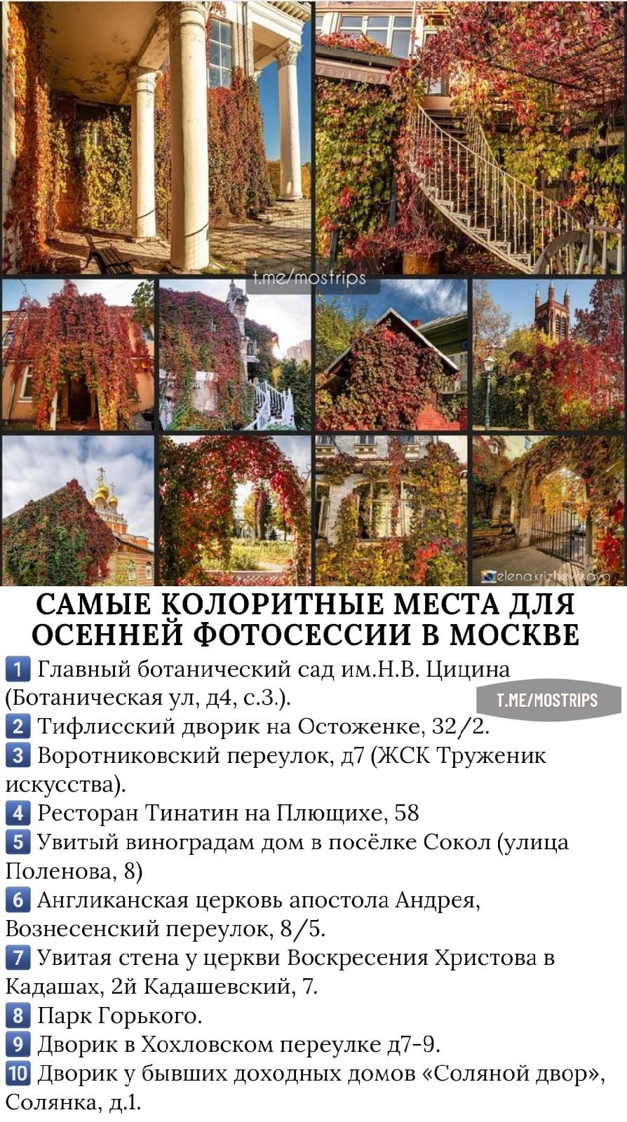 Пост Москвича номер #257893