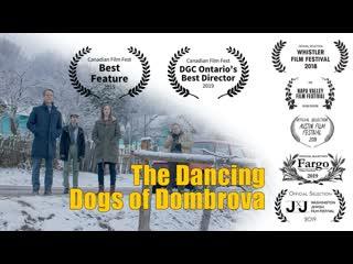Танцующие собаки из Домбровы (2018) The Dancing Dogs of Dombrova