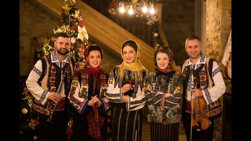 Fetele din Botoșani ❌ Frații Gherghelaș Primește ne gazdă în casă COLIND