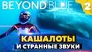 КАШАЛОТЫ И СТРАННЫЕ ЗВУКИ В BEYOND BLUE - Прохождение игры | Часть 2